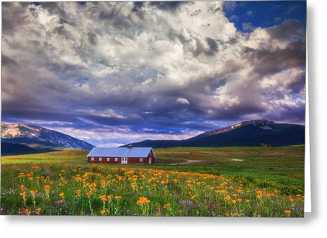 Wildflower Fine Art Greeting Cards - Crested Butte Morning Storm Greeting Card by Darren  White