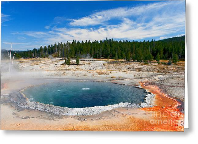 Algae Greeting Cards - Crested Pool Yellowstone National Park Greeting Card by Ram Vasudev