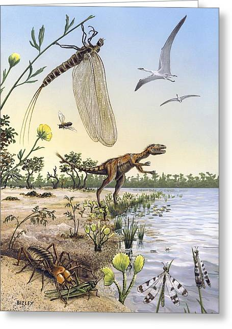 Flying Spider Greeting Cards - Cretaceous of Brazil, prehistoric scene Greeting Card by Science Photo Library