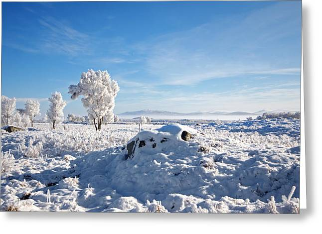 Rannoch Moor Greeting Cards - Crianlarich - Sunlit Snow Greeting Card by Pat Speirs
