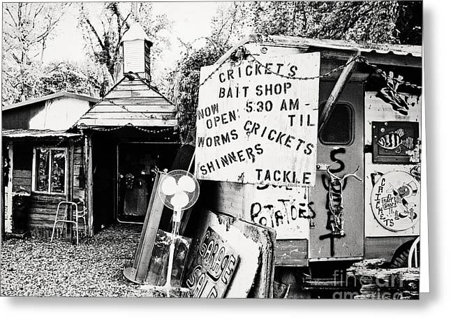 Fishing Bait Shop Greeting Cards - Crickets Bait Shop Greeting Card by Scott Pellegrin