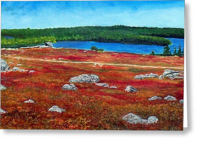 Blueberry Barrens Greeting Cards - Crimson Blueberry Barren Greeting Card by William Tremble