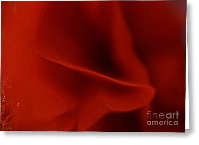 Dance Ballet Roses Greeting Cards - Crimson Greeting Card by Cassandra Buckley