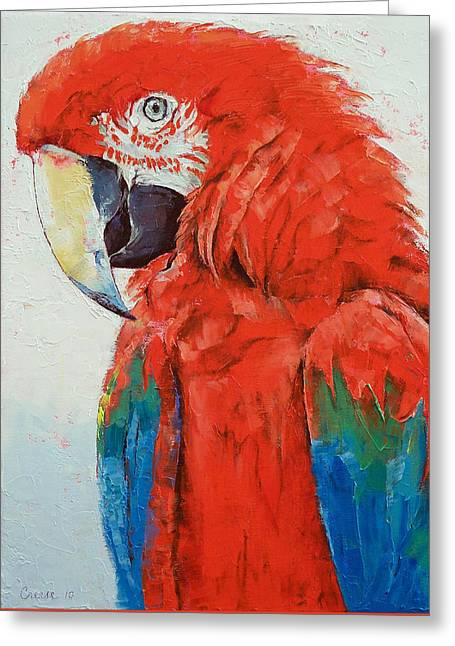 Crimson Macaw Greeting Card by Michael Creese