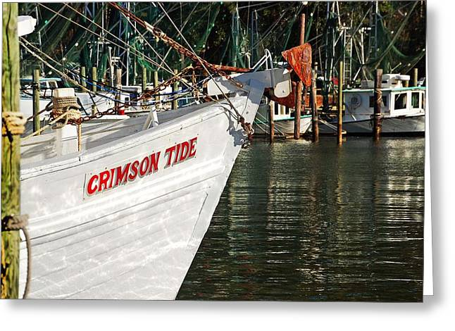 Crimson Tide Bow Greeting Card by Michael Thomas