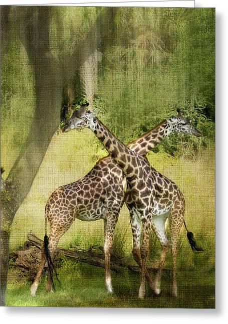 Kathy Jennings Greeting Cards - Criss Cross Greeting Card by Kathy Jennings