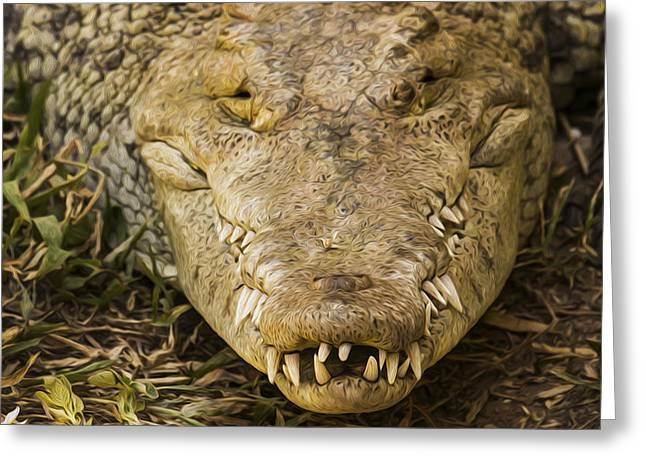 Fangs Greeting Cards - Crocodile Greeting Card by Aged Pixel