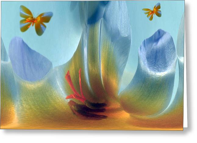 Crocus Fantasy Greeting Card by Terence Davis