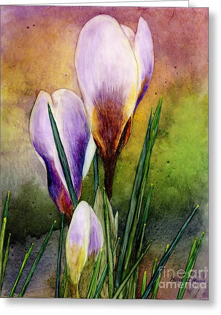 Crocus Greeting Cards - Crocus Greeting Card by Hailey E Herrera