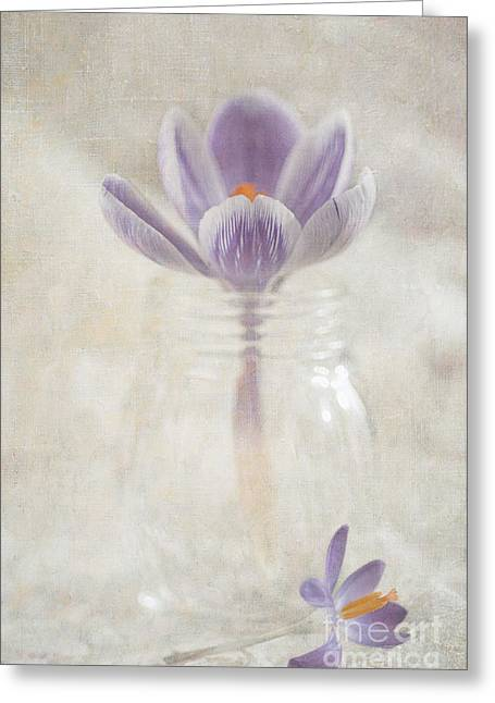 Crocus Greeting Cards - Crocus Greeting Card by Marion Galt