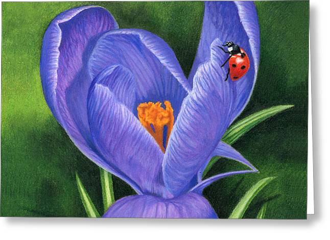 March Greeting Cards - Crocus And Ladybug Greeting Card by Sarah Batalka