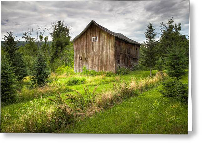 Finger Lakes Greeting Cards - Crooked Old Barn on South 21 - Finger Lakes New York State Greeting Card by Gary Heller