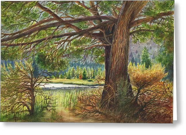 Arthur Fix Greeting Cards - Crooked River Shade Greeting Card by Arthur Fix