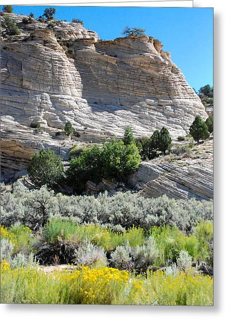 Geobob Greeting Cards - Cross-bedded Navajo Sandstone cliffs in Johnson Canyon near Kanab Utah Greeting Card by Robert Ford