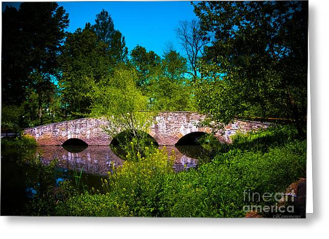 Fantasy Tree Art Greeting Cards - Cross Over the Bridge Greeting Card by Colleen Kammerer