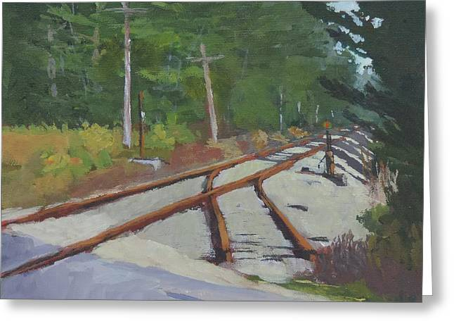Rural Maine Roads Paintings Greeting Cards - Crossing at Cathance Greeting Card by Bill Tomsa