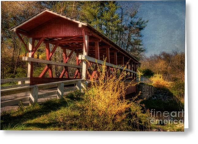 Fishing Creek Digital Greeting Cards - Crossing Shawnee Creek Greeting Card by Lois Bryan