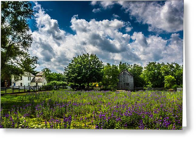 Crossroads Greeting Cards - Crossroads Village Pasture Greeting Card by Randy Scherkenbach