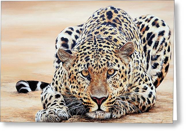 Rosette Paintings Greeting Cards - Crouching Leopard Hidden Prey Greeting Card by Luna