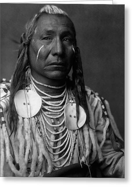 Braids Greeting Cards - Crow Indian Man circa 1908 Greeting Card by Aged Pixel