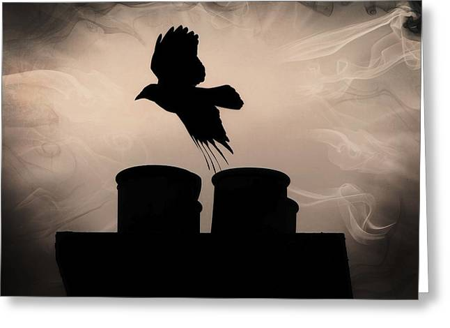 Crow Rising Greeting Cards - Crow Rising Greeting Card by Anne Macdonald