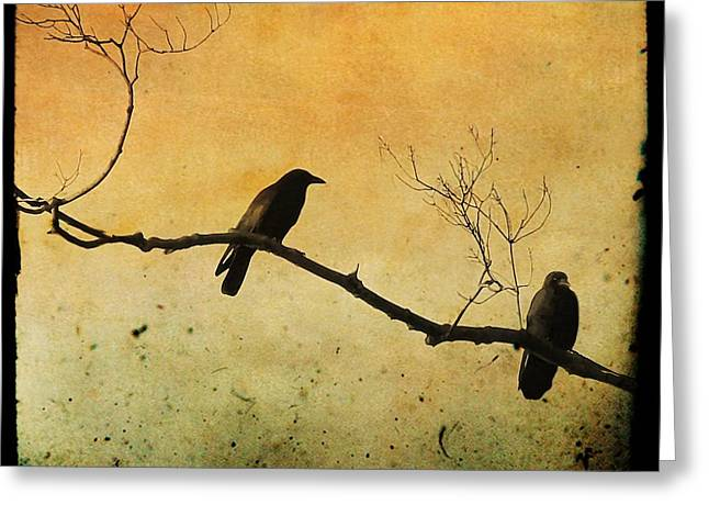 Birds On A Branch Greeting Cards - Crowded Branch Greeting Card by Gothicolors Donna Snyder