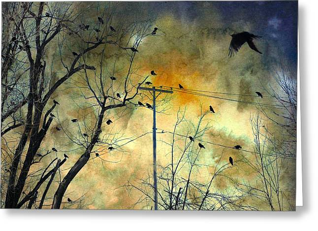 Crows In Trees Greeting Cards - Crows Colors Greeting Card by Gothicolors Donna Snyder