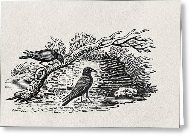 Print Photographs Greeting Cards - Crows Corvus Corone Corone From The History Of British Birds Volume I, Pub. 1797 Wood Engraving Greeting Card by Thomas Bewick