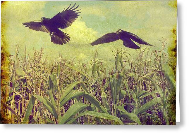 Cornfield Digital Art Greeting Cards - Crows Of The Corn Greeting Card by Gothicolors Donna Snyder