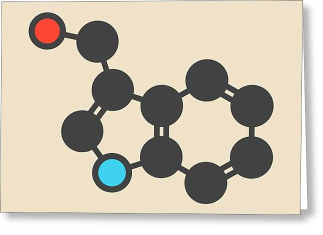 Cruciferous Vegetable Molecule Greeting Card by Molekuul