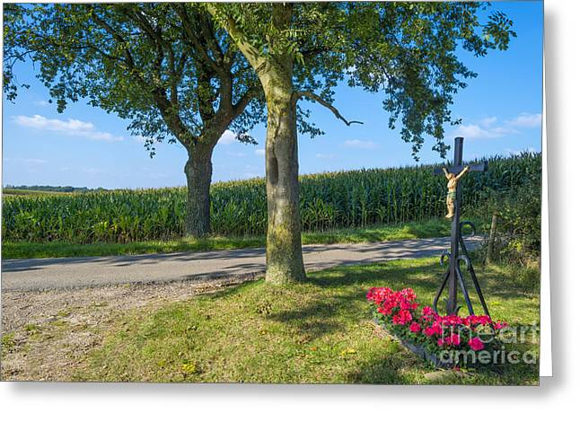 Limburg Greeting Cards - Crucifix along a field with corn in summer Greeting Card by Jan Marijs