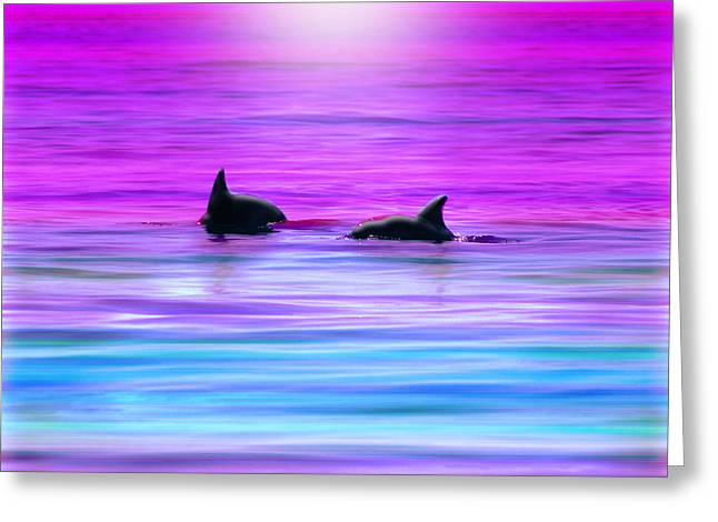 Sealife Greeting Cards - Cruisin Together Greeting Card by Holly Kempe