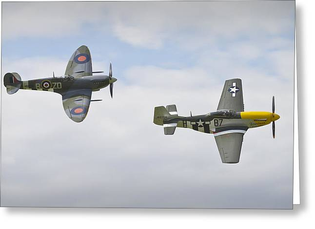 Ferocious Frankie Greeting Cards - Cruising Spitfire and Mustang  Greeting Card by Maj Seda