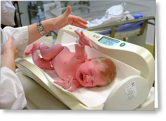 Crying Baby Girl Is Being Weighed Greeting Card by Photostock-israel