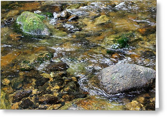Crystal Clear Greeting Card by Kevin F Cook