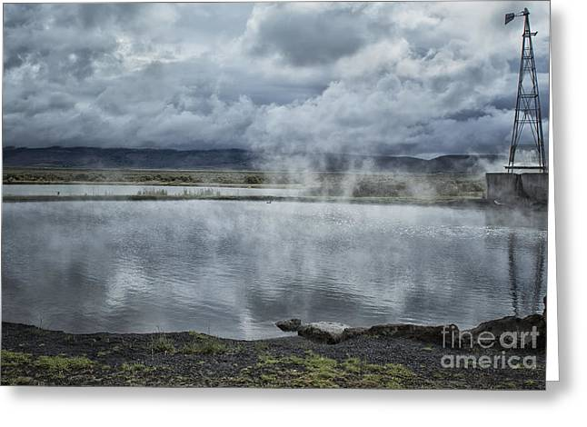 Alternative Home Decor Greeting Cards - Crystal Crane Hot Springs Greeting Card by Belinda Greb