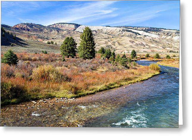 Kathleen Hill Greeting Cards - Crystal Creek in the Gros Ventre Greeting Card by Kathleen Bishop