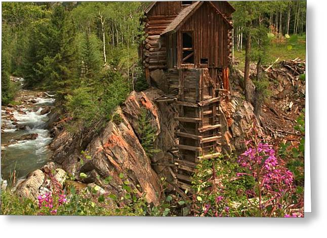 Crystal Mill Wildflowers Greeting Card by Adam Jewell