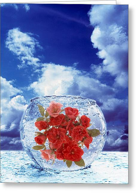 Crystal Round Vase Filled With Ice Greeting Card by Panoramic Images