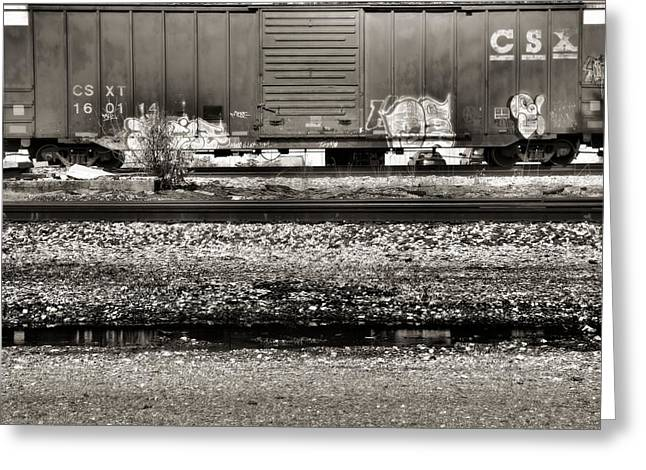 Cargo Train Greeting Cards - CSX Train Greeting Card by Dan Sproul