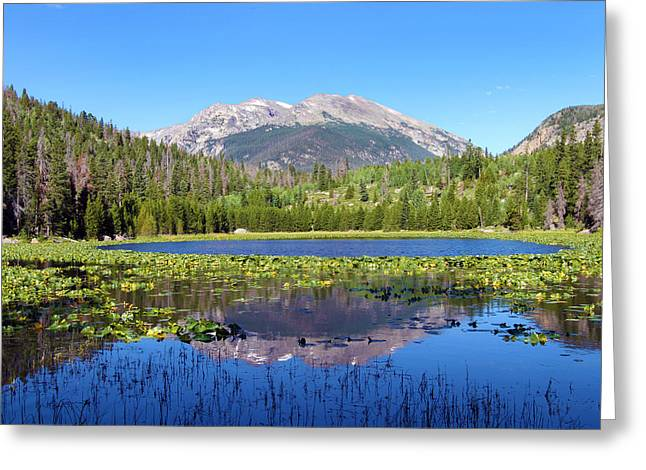 David Yunker Greeting Cards - Cub Lake Greeting Card by David Yunker