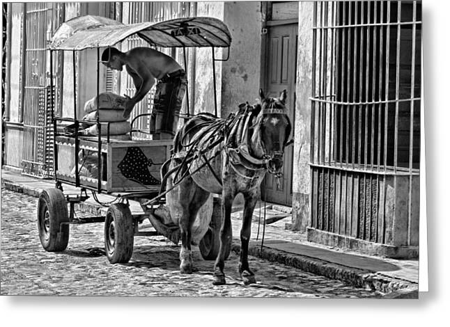 Horse And Cart Greeting Cards - Cubano Taxi Greeting Card by Dawn Currie