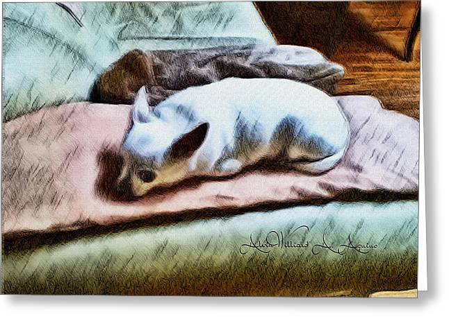 Me And My Dog Greeting Cards - Cuddly Greeting Card by Withintensity  Touch
