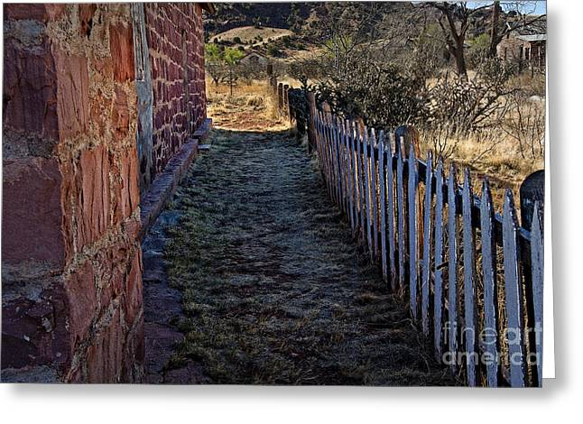 Paint Photograph Greeting Cards - Cuervo and the Garden Path Greeting Card by Lee Craig