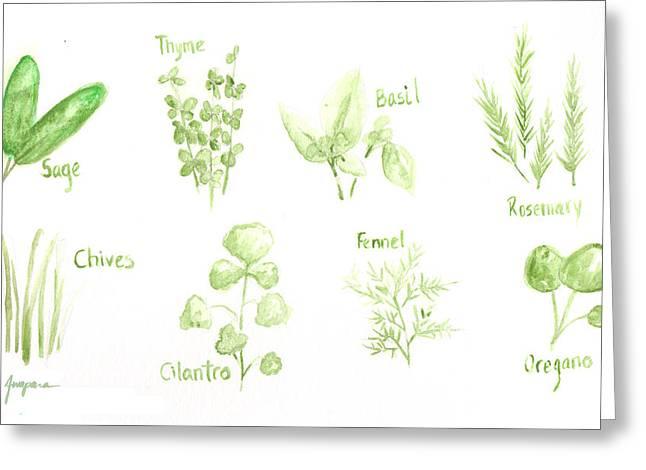 Culinary Drawings Greeting Cards - Culinary Herbs Leafy Greens Greeting Card by Patricia Awapara