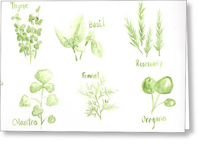 Culinary s Drawings Greeting Cards - Culinary Herbs Leafy Greens Greeting Card by Patricia Awapara