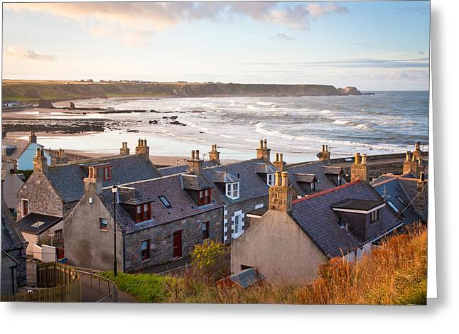 Cullen Greeting Cards - Cullen Greeting Card by Tom Gowanlock