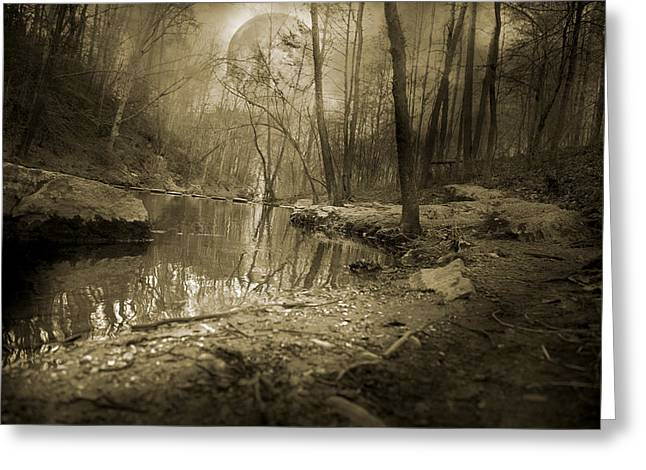 Trees Reflecting In Creek Greeting Cards - Culmination Greeting Card by Betsy A  Cutler