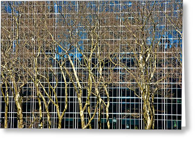 Bryant Park Greeting Cards - Culture and Nature Greeting Card by Joanna Madloch