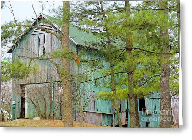 Moral Greeting Cards - Culver Barn and Evergreen Greeting Card by Tina M Wenger